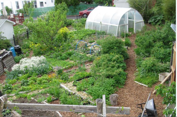 What Everybody Should Know About Profitable Permaculture Farms