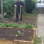 Crisis Gardening: How to prepare your garden beds for planting